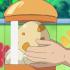 Egg-Pokemon