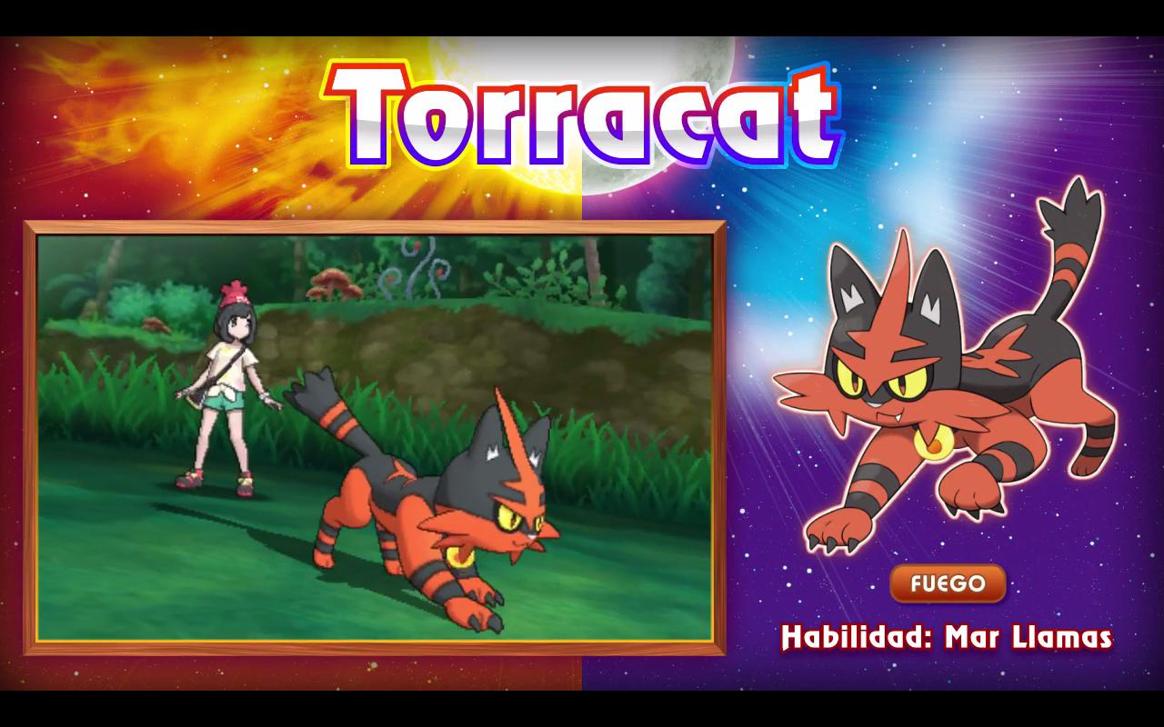 torracat_1