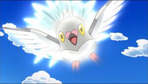 TV Pokémon Pidove de Ash